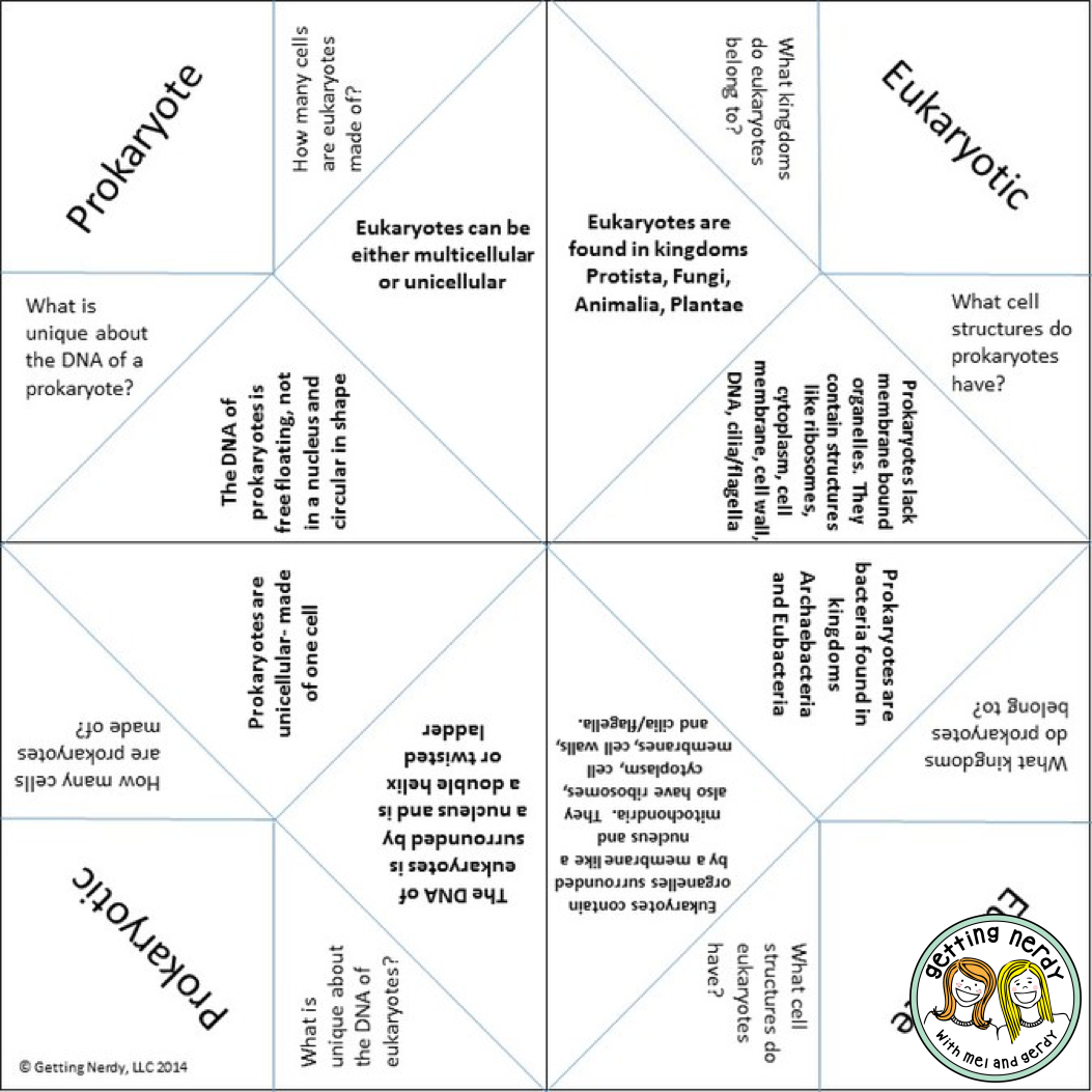 lesson plan cootie catchers as study tools getting nerdy science. Black Bedroom Furniture Sets. Home Design Ideas