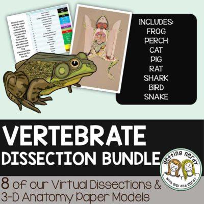 3-D-Dissection-Model-Bundle-Vertebrates