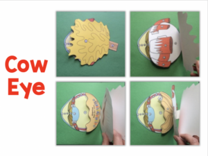 3-D Scienstructable Dissection Paper Models for Life Science