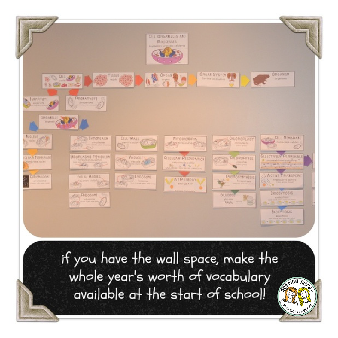 Visualizing Vocabulary:  Making Word Walls Accessible to All Students